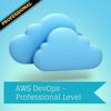 Professional - AWS DevOps Cert