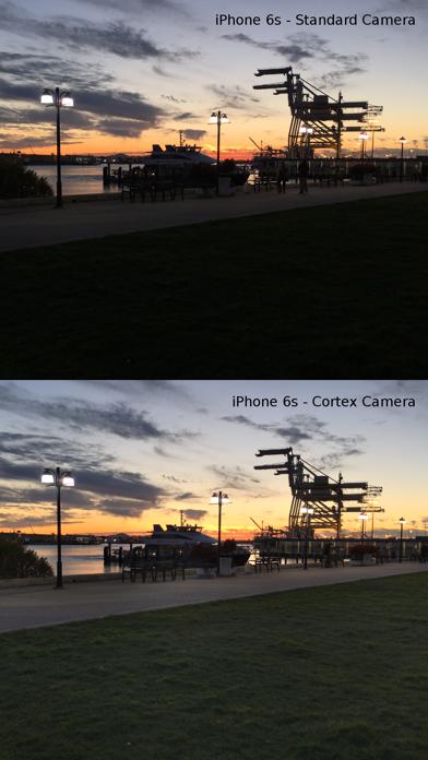 Cortex Camera