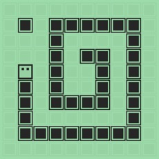 Activities of Snake Puzzle-Classic version