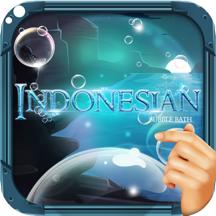 沐浴泡泡 印尼语: 了解印尼 PRO