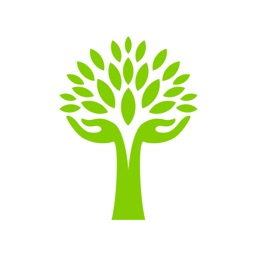 ServiceTree - Local Services