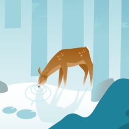 Ícone do app Wildfulness: Meditate & Relax