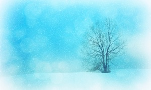 Wonderful Winter HD