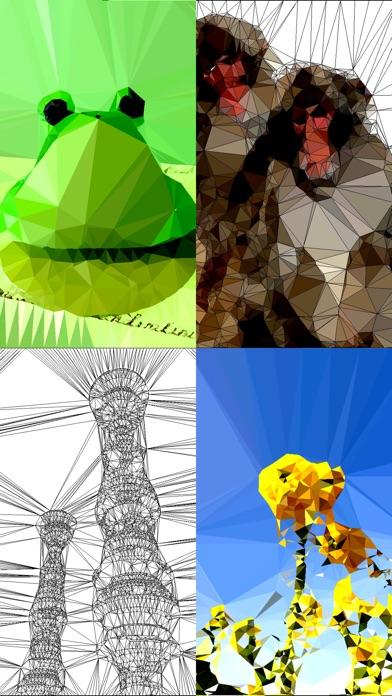 ポリゴンアート - レトロ3Dゲーム風写真加工編集カメラ紹介画像2