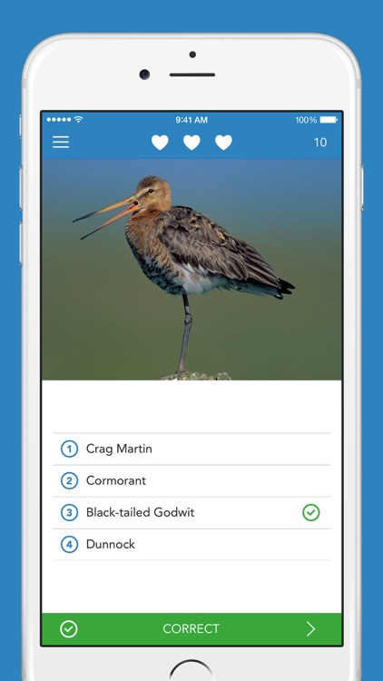 Birds PRO HD screenshot-3