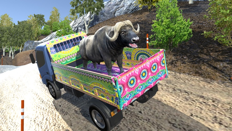 Eid Animals Transport Truck