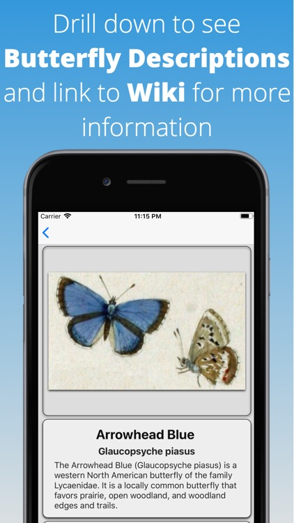 Butterfly Dictionary Pro screenshot-3