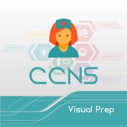 CCNS Visual Prep