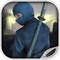 Codes for Flying Ninja Monster Assassin:City Rescue Battle Hack