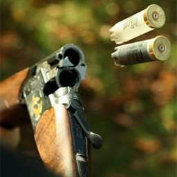 Clay Pigeon Shooter HD