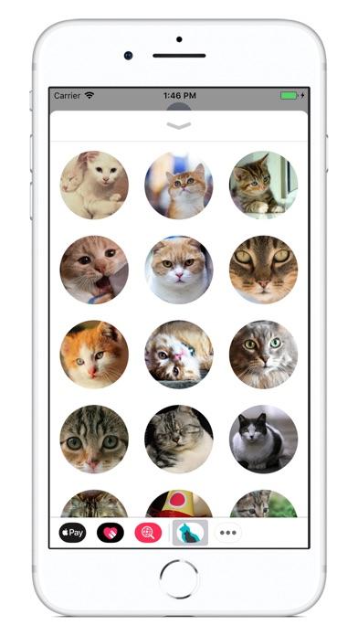 Cat Calendar 2018 screenshot 4