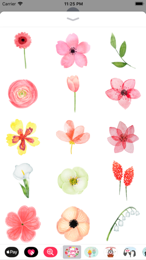 Watercolor Spring Flower Party On The App Store