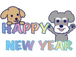 Happy Schnauzer and Toypoodle