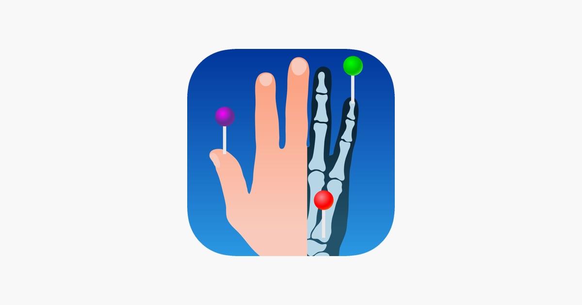Imaios E Anatomy On The App Store