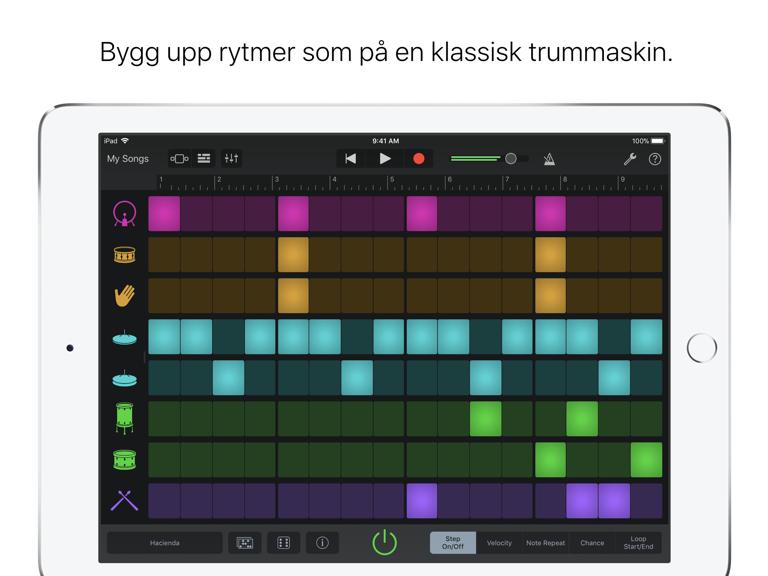 iPad Skärmavbild 1