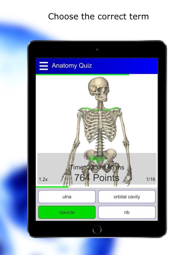 Niedlich Quiz Anatomie Und Physiologie Histologie Fotos ...