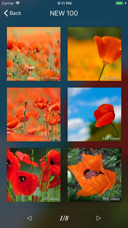 Flower Gallery Pro screenshot-1