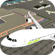 Activities of Pilot Flight Airplane Sim