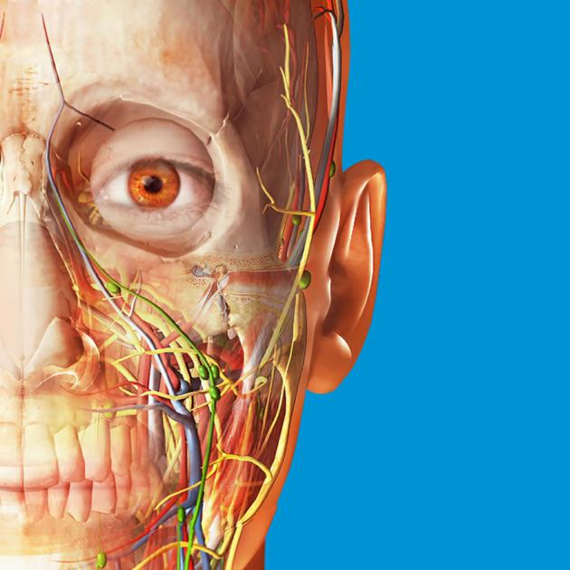 Atlas de anatomía humana edición 2017 en Mac App Store