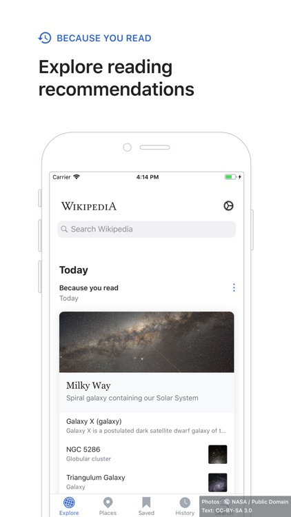 Wikipedia screenshot-3
