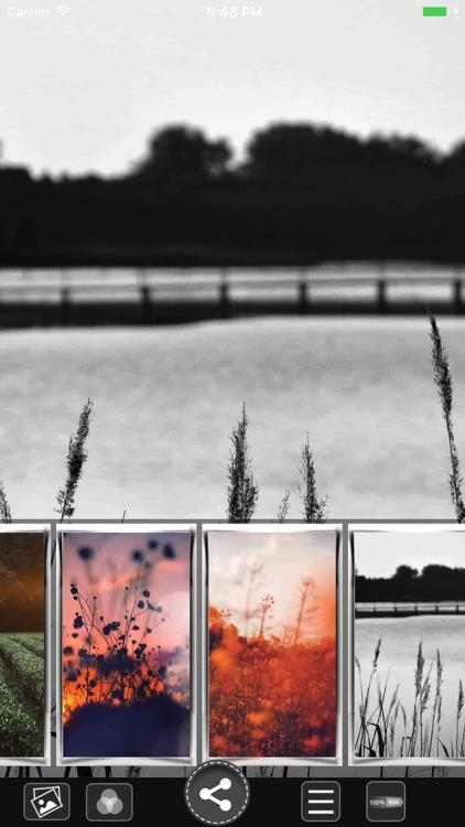 Flower HD Wallpapers screenshot-3