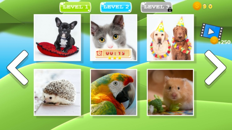 Puzzle Pets Dogs Cats Game