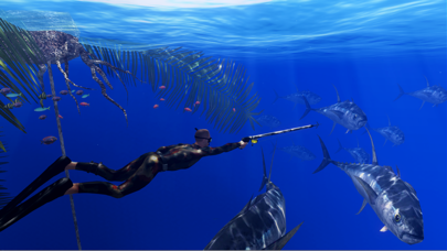 Freediving Hunter Adrenaline