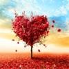 爱情语录-唯美情感语录治愈系美文