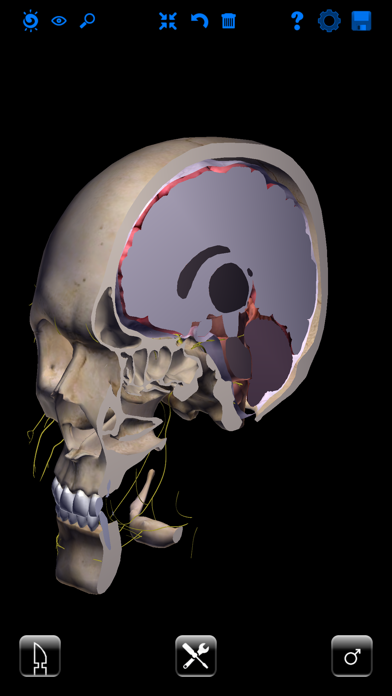 ザイゴット3D人体解剖のおすすめ画像3