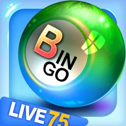 Bingo City Live 75 + Vegas Slots, Video Poker