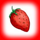 Der Erdbeergarten (The Strawberry Garden) icon
