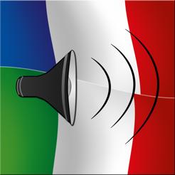 dizionario francese italiano traduzione frasi