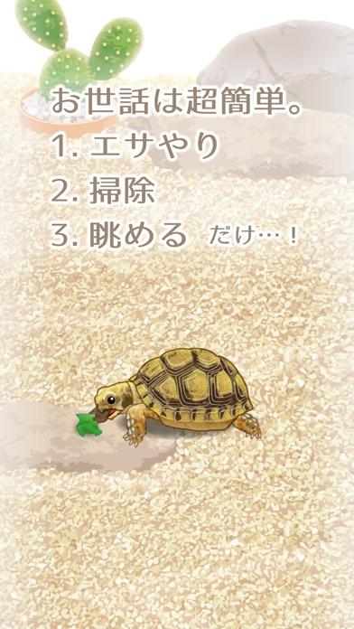 癒しのカメ育成ゲーム(無料)のおすすめ画像2