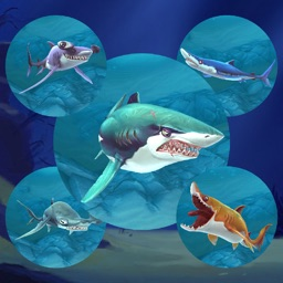 Shark.io : Multiplayer simulator game - World of respeck hungry fish