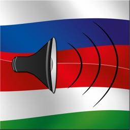 Magyar / Orosz kifejezéstár - Russian / Hungarian phrasebook - Multiphrasebook