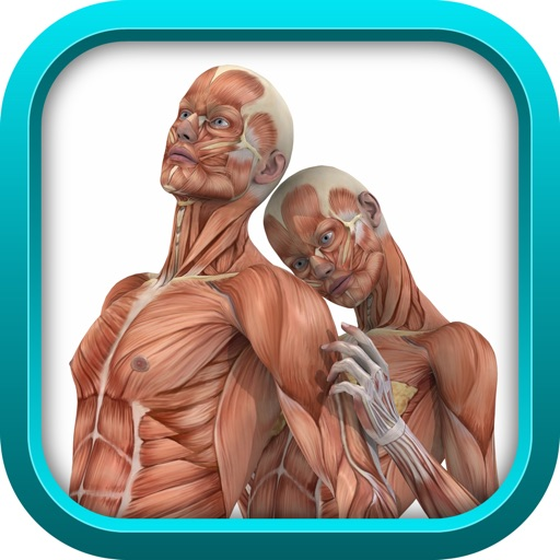 Medical Physiology Review Game : USMLE Step 1 & COMLEX Level 1 (SCRUB WARS) FULL