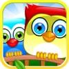 Bird Drop: Ping Pet Game
