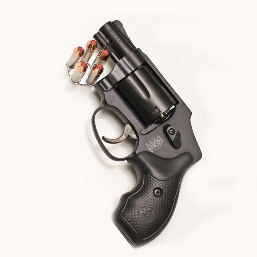 Handguns Pro
