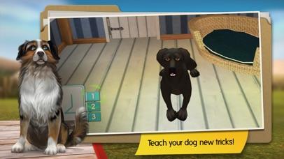 DogHotel screenshot three