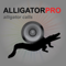 App Icon for REAL Alligator Calls and Alligator Sounds for Calling Alligators (ad free) BLUETOOTH COMPATIBLE App in United States IOS App Store
