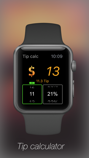 Watch Calculator professional Screenshot