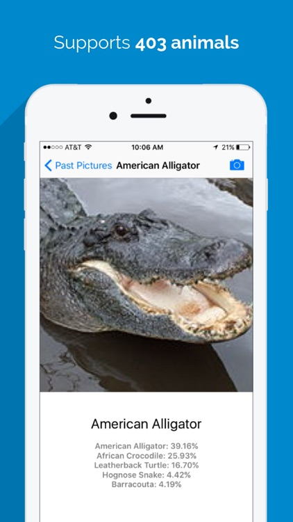Animal Identifier - Animal Identification From a Picture