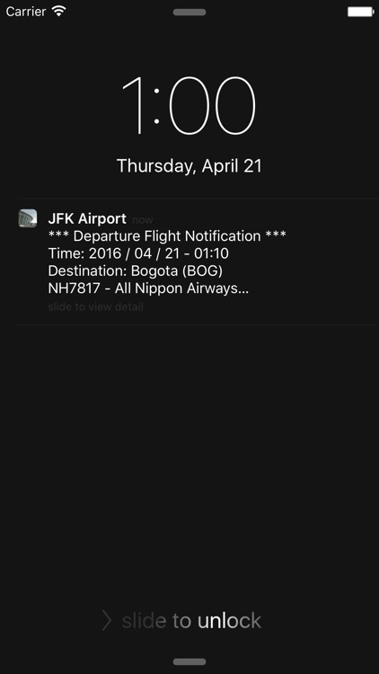 US New York JFK Intl Airport Flight Info screenshot-3