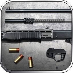 SPAS-12: Special Purpose Automatic Shotgun, Shoot to Kill - Lord of War