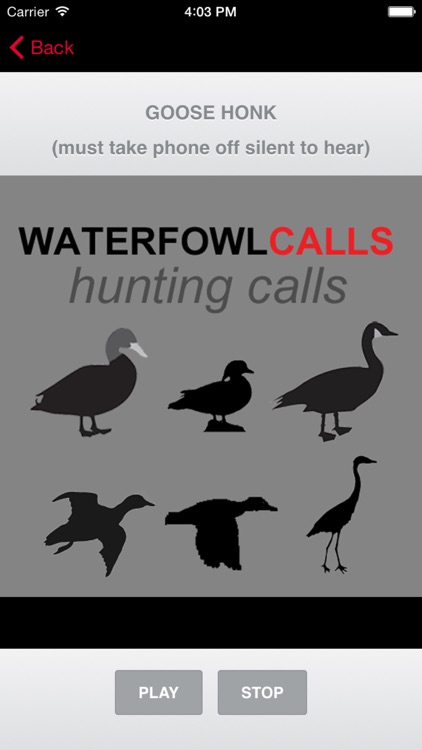 Waterfowl Hunting Calls - The Ultimate Waterfowl Hunting Calls App For Ducks, Geese & Sandhill Cranes - BLUETOOTH COMPATIBLE screenshot-3