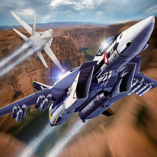 Black Dog Fly - Amazing Combat Aircraft Simulator Game