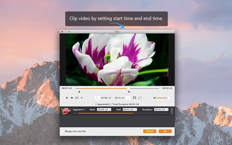 Screenshot #4 for MP4 Converter - MP4 to MP3