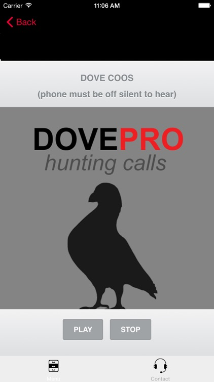 REAL Dove Sounds and Dove Calls for Bird Hunting!