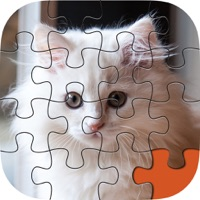 Codes for Animal Puzzle Packs & Bits - Kitty Cat Baby Mermaid Jigsaw Hack