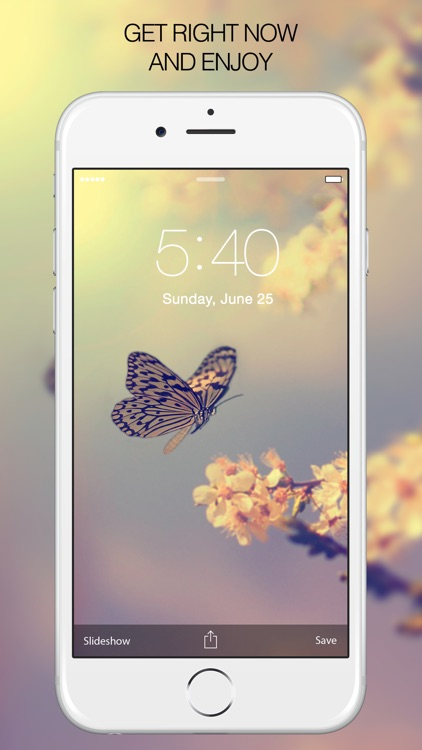 Butterfly Pictures & Butterfly Wallpapers Free screenshot-4